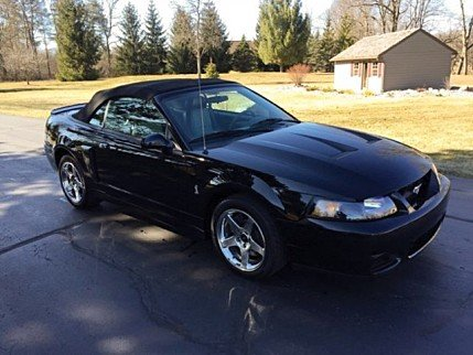 2003 Ford Mustang Cobra Convertible for sale 100995218