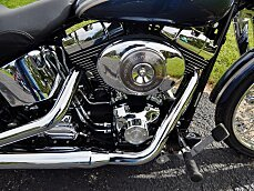 2003 Harley-Davidson Softail for sale 200638399