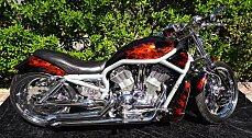 2003 Harley-Davidson V-Rod for sale 200377676