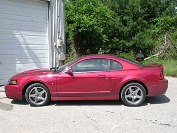 2004 Ford Mustang Cobra Coupe for sale 100820616