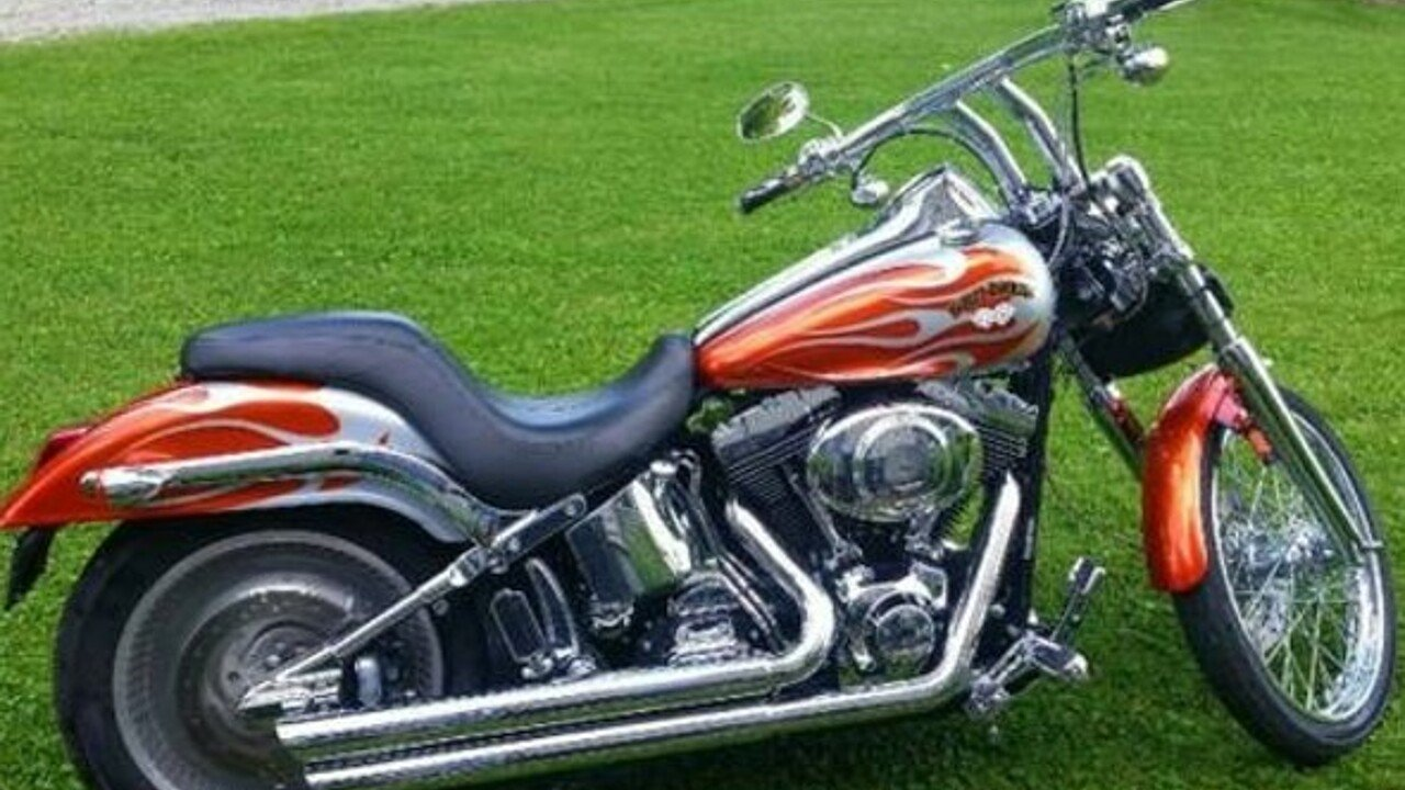 2004 Harley-Davidson Softail for sale 200487158