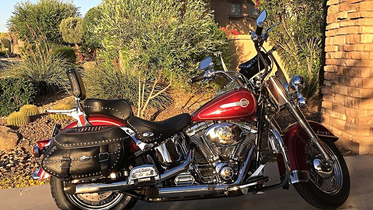 2004 Harley-Davidson Softail for sale 200560086
