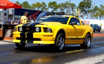 2005 Ford Mustang GT Coupe for sale 100738192