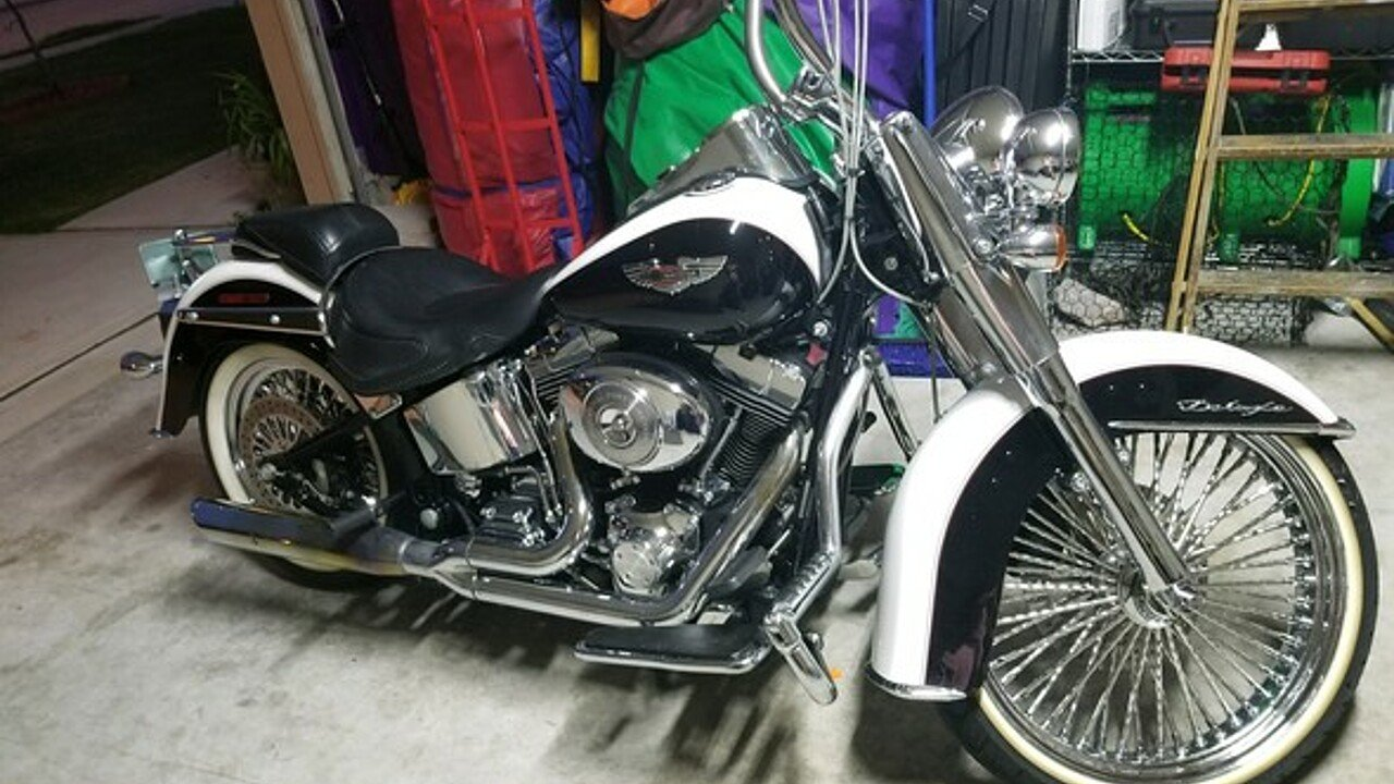 2005 Harley-Davidson Softail for sale 200491118