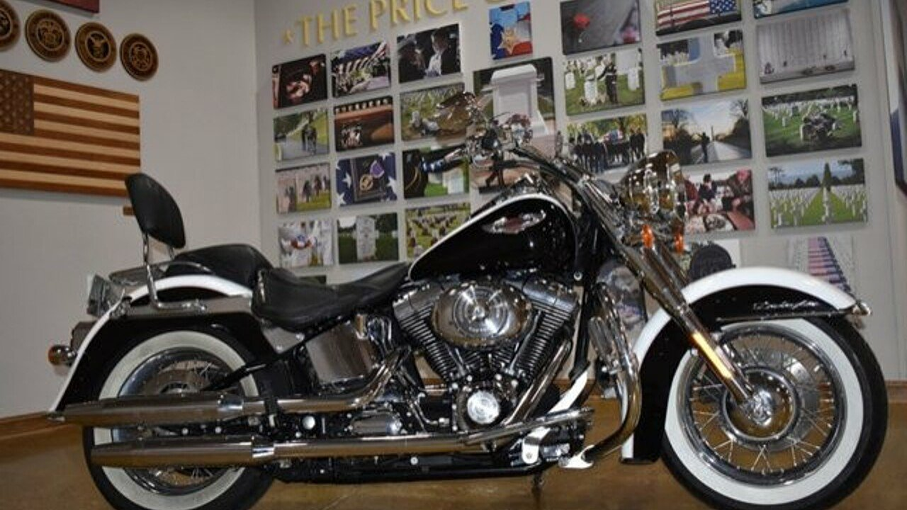 2005 Harley-Davidson Softail for sale 200623749