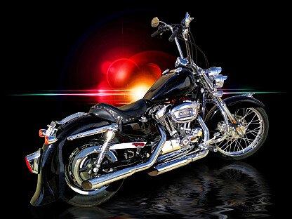 2005 Harley-Davidson Sportster 1200 Custom for sale 200482982