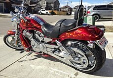 2005 Harley-Davidson V-Rod for sale 200577536