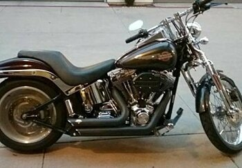 2006 Harley-Davidson Softail for sale 200450827