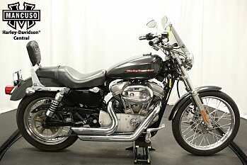 2006 Harley-Davidson Sportster for sale 200486202