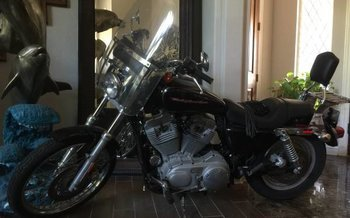 2006 Harley-Davidson Sportster for sale 200589261