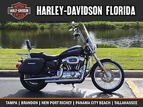 2006 Harley-Davidson Sportster for sale 200620719