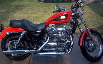 2007 Harley-Davidson Sportster 50th Anniversary for sale 200577090