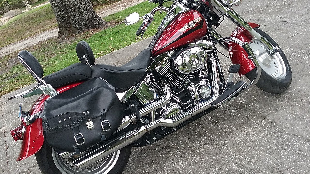 2008 Harley-Davidson Softail for sale 200553431