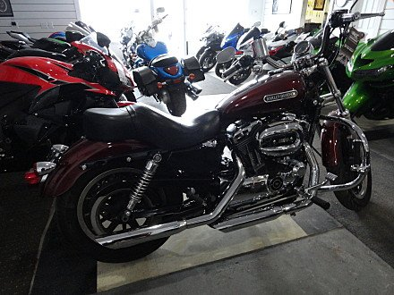 2008 Harley-Davidson Sportster for sale 200526182
