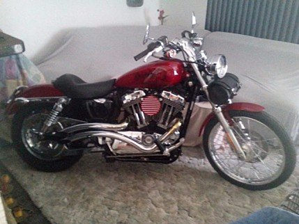 2009 Harley-Davidson Sportster Custom for sale 200499292