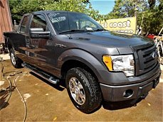 2010 Ford F150 for sale 100783867