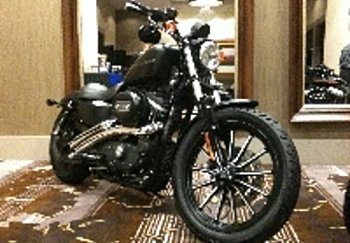 2010 Harley-Davidson Sportster for sale 200391267