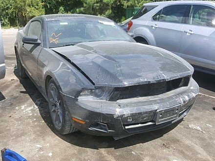 2011 Ford Mustang Coupe for sale 101058370