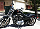 2011 Harley-Davidson Sportster for sale 200547610