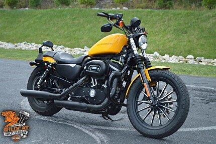 2011 Harley-Davidson Sportster for sale 200634658