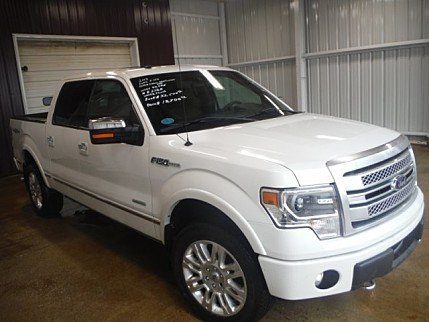 2013 Ford F150 for sale 100865210