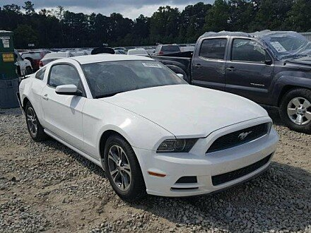 2013 Ford Mustang Coupe for sale 101058143