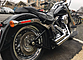 2013 Harley-Davidson Softail for sale 200624651
