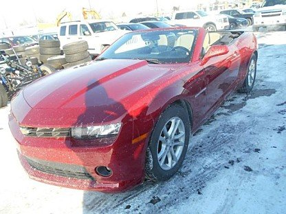 2014 Chevrolet Camaro LT Convertible for sale 100947576