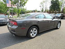 2014 Dodge Charger for sale 100787140