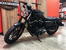 2014 Harley-Davidson Sportster for sale 200626526
