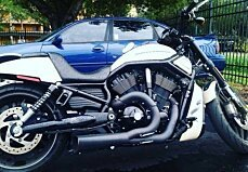 2014 harley-davidson Night Rod for sale 200616397
