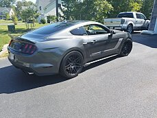 2015 Ford Mustang Coupe for sale 100778825