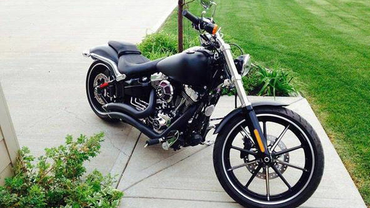 2015 Harley-Davidson Softail for sale 200436031