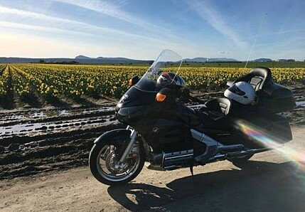 2015 Honda Gold Wing for sale 200471505