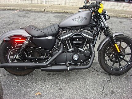 2016 Harley-Davidson Sportster for sale 200494686