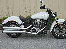 2016 indian Scout for sale 200639103