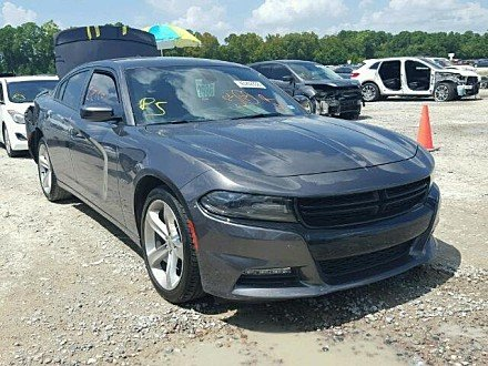 2017 Dodge Charger R/T for sale 101058120