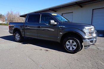 2017 Ford F150 for sale 100956514