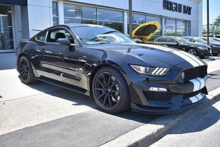 2017 Ford Mustang Shelby GT350 Coupe for sale 100995401