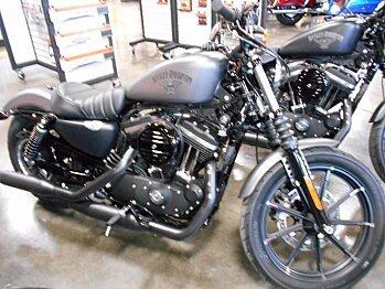 2017 Harley-Davidson Sportster for sale 200477775