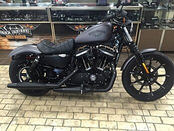 2017 Harley-Davidson Sportster for sale 200478627