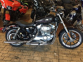 2017 Harley-Davidson Sportster for sale 200478634