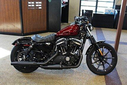 2017 Harley-Davidson Sportster Iron 883 for sale 200450329
