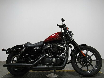 2017 Harley-Davidson Sportster for sale 200559510