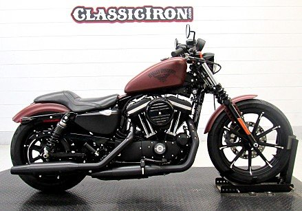 2017 Harley-Davidson Sportster Iron 883 for sale 200651656