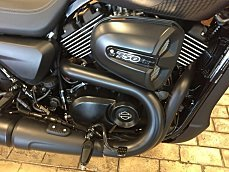 2017 Harley-Davidson Street 750 for sale 200478633