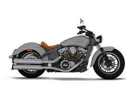2017 Indian Scout for sale 200628480