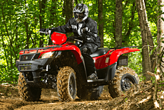 2017 Suzuki KingQuad 500 for sale 200524118