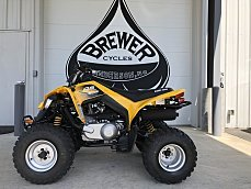 2018 Can-Am DS 250 for sale 200586823