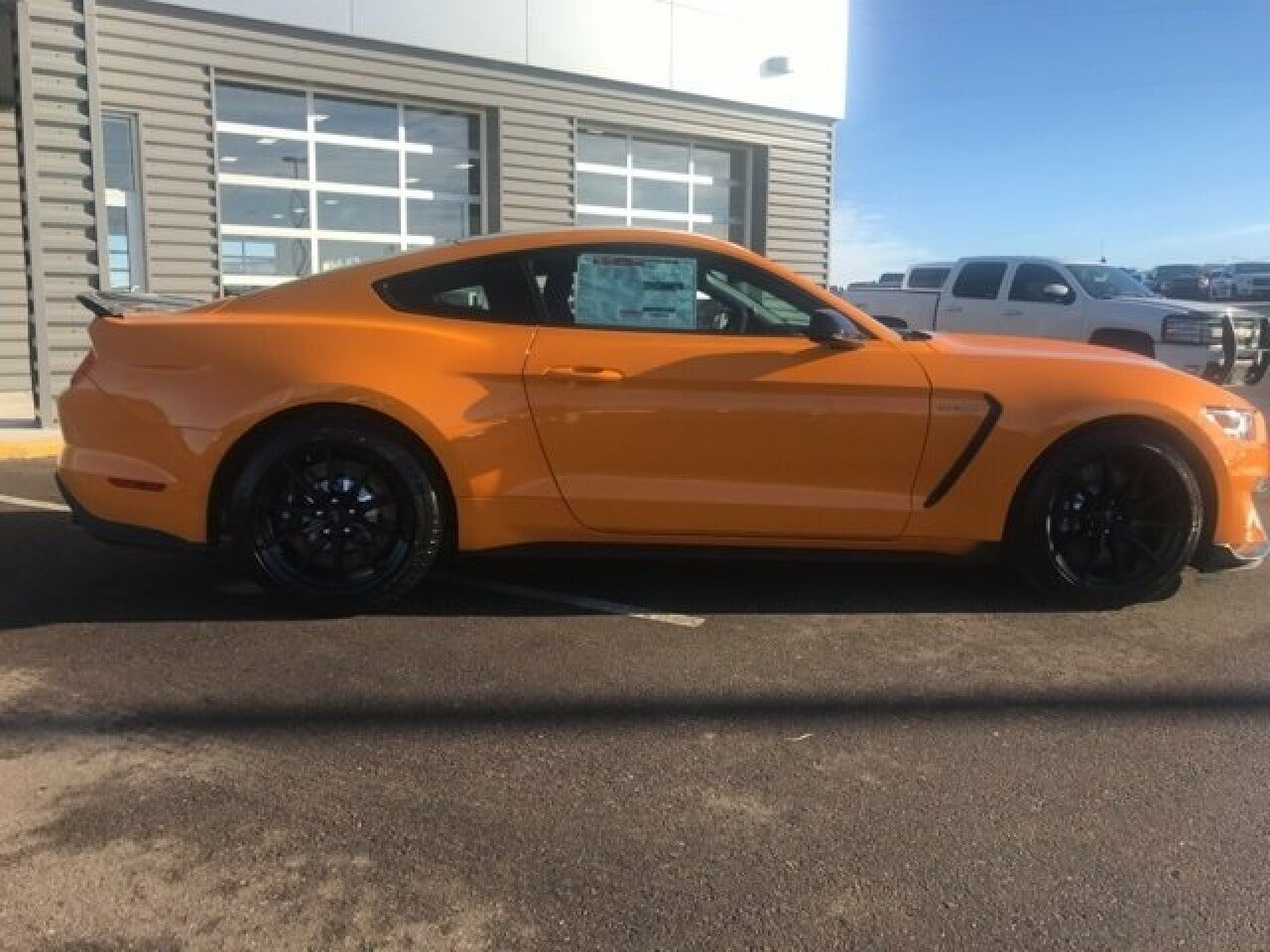 2018 Ford Mustang Shelby Gt350 Coupe For Sale Near Osseo